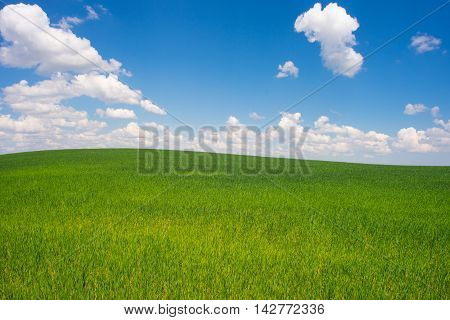 beautiful landscape clean blue sky. beautiful landscape clean blue sky.