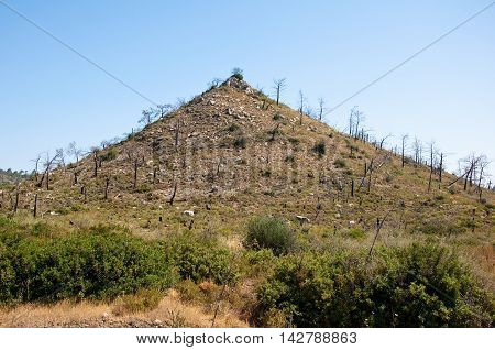The bald hill. Greece Rhodes. In the centr island.