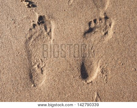 Man´s And Woman´s  Footprint In Wet Beach Sand
