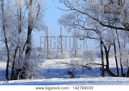 High-voltage Power Line In A Snowy Forest