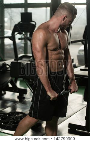 Bodybuilder Exercising Triceps On Machine