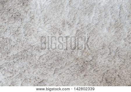 Closeup surface abstract fabric pattern at the gray fabric carpet at the floor of house texture background
