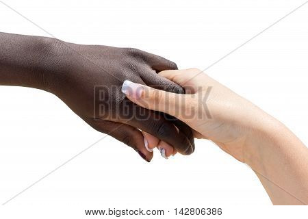 Macro close up of white female hand holding african female hand. Isolated on white background.