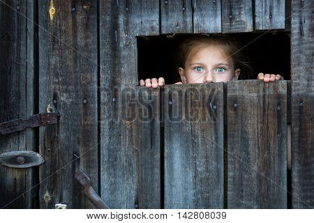 Locked the child anxiously looks through the crack in the barn door.