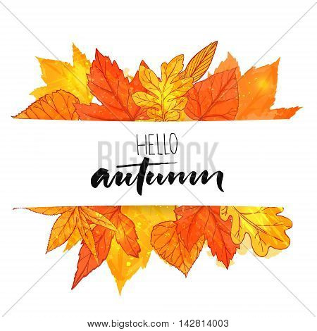 Hello autumn banner with orange and red hand drawn leaves. Vector calligraphy design. Fall background with golden leaf