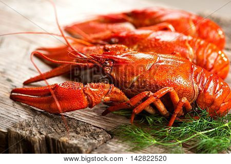 Crayfish. Crawfish. Red boiled crawfishes on a wooden table in rustic style, close-up, selective focus. Lobster closeup
