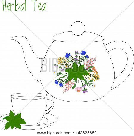 teapot with tea cups, herbal tea, green tea, vector illustration