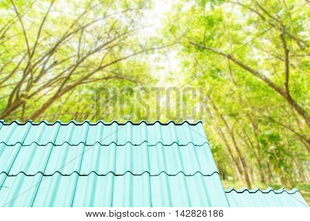 Architectural detail of the metal roof of the commercial construction side beautiful landscape.