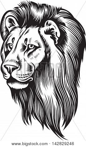 Lion head with mane. Black and white vector illustration