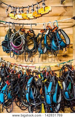different climbing equipment and insurance hung on wooden wall in a house