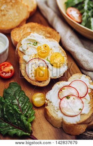 Delicious toasted baguette slices with tomatoes, radishes and herbs.