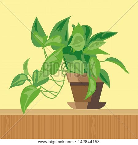 Office plant flat style. Digital vector image