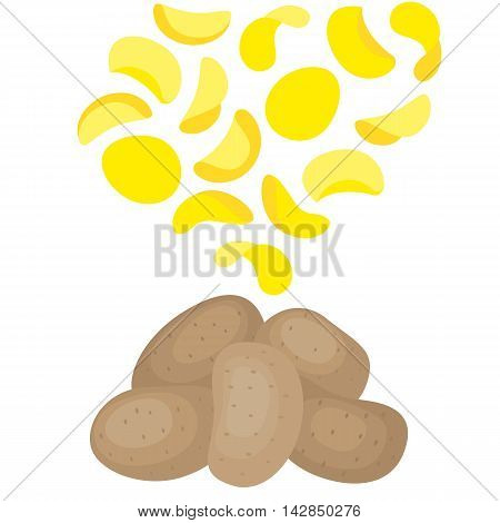Vector potatoes and potato chips on white background