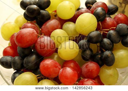 Close up of bright tasty ripe grapes