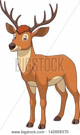 Vector illustration adult funny deer smiling on a white background