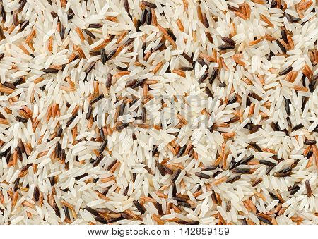 Food background with three mixed of Thai rice varieties : brown rice mixed wild rice white (jasmine) rice. species Oryza sativa.