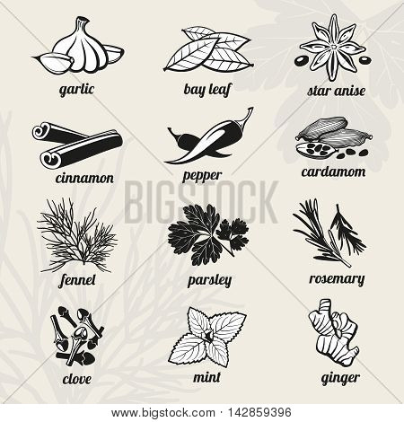 Spice icons set. Cooking, fresh aroma natural ingredient. Vector illustration