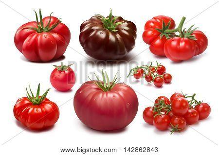 Set Of Different Tomato Varieties