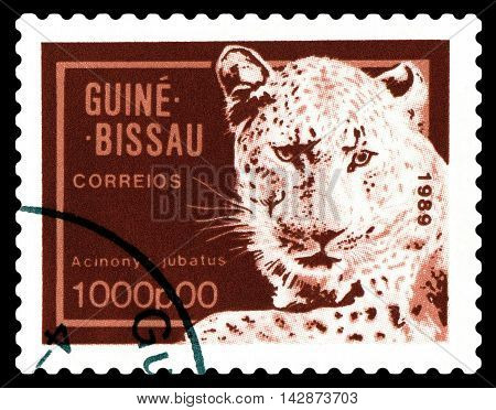 STAVROPOL RUSSIA - August 11 2016: A stamp printed by Guinea - Bissau shows African cheetah circa 1989.