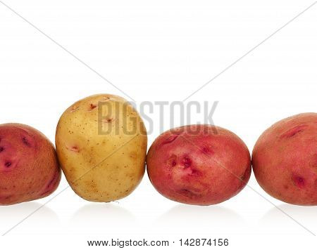 Raw new potatoes isolated on white background close up