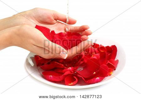 Manicure - hands with france colour nails red rose petals and water - beauty salon