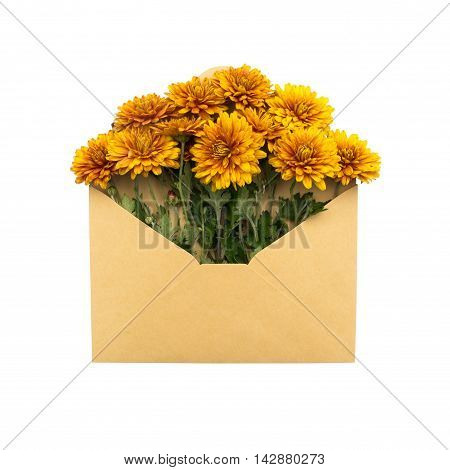 flowers in the envelope. isolated on white background. love letter. healing flowers.