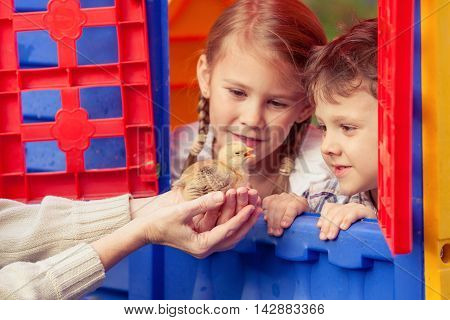 Portrait of children with chick outdoors at the day time.