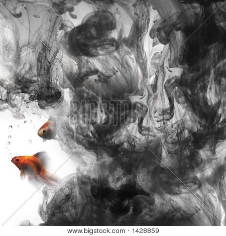 Goldfish And Ink