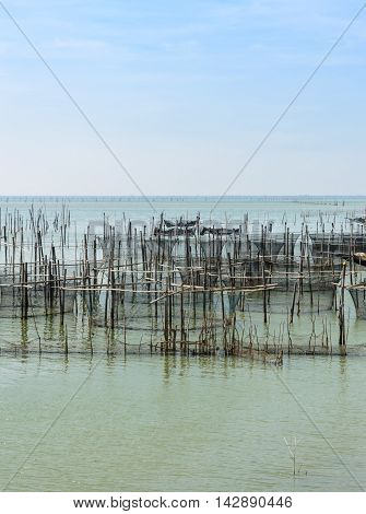 Fish farming in the sea with cages for rearing fish in Thailand