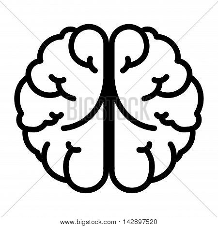 brain mind head intellectual think human organ topmental vector  illustration isolated