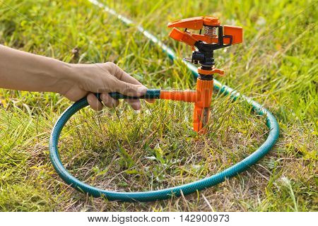 hand installing sprinkler for irrigation of lawn