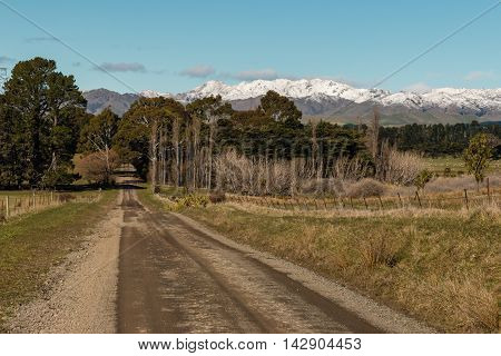 country road across farmland in Southern Alps in New Zealand