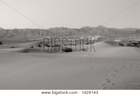Sand Dunes At Death Valley In California, Usa