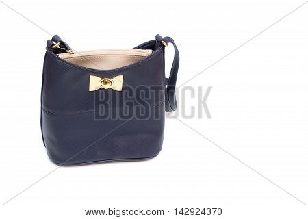 blue Handbag Bag cosmetics and putting money for Lady. on white background