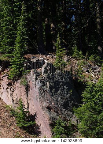 Vibrant trees find purchase on a giant red boulder in Crater Lake National Park.