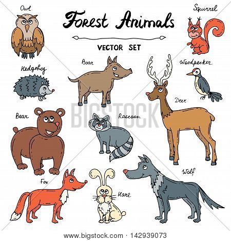 Vector set with hand drawn colored doodles of forest animals. Sketches for use in design