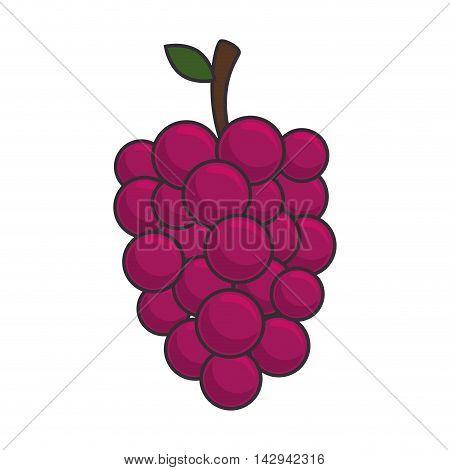 grape cluster fruit food nutrition ripe wine