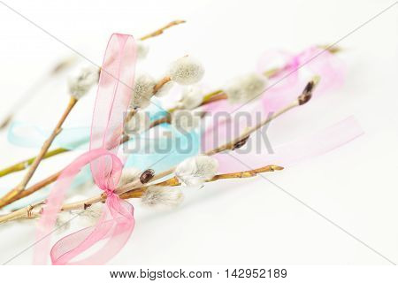 Easter spring background with ribbon and blossom branch closeup