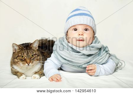 Baby and cat - good friends on gray background