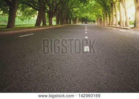 Blurred image of empty road leading through alley and wet after rain toned with sun flare effect
