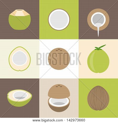 Vector coconut icons set, flat design with different background color