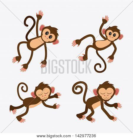 monkey cartoon animal ape icon set. Colorful design. Vector illustration