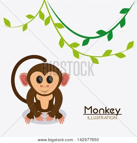 monkey leaves cartoon animal ape icon. Colorful design. Vector illustration
