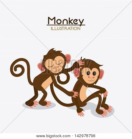 monkey couple cartoon animal ape icon. Colorful design. Vector illustration