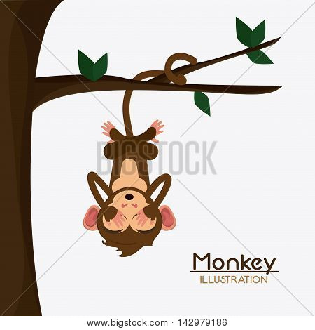 tree leaves monkey cartoon animal ape icon. Colorful design. Vector illustration