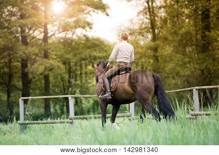 man riding his brown horse in nature