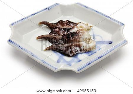 torigai, japanese cockle isolated on white background