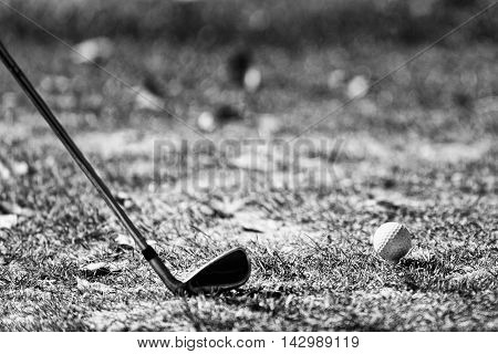 Iron golf club and golf ball, black and white image