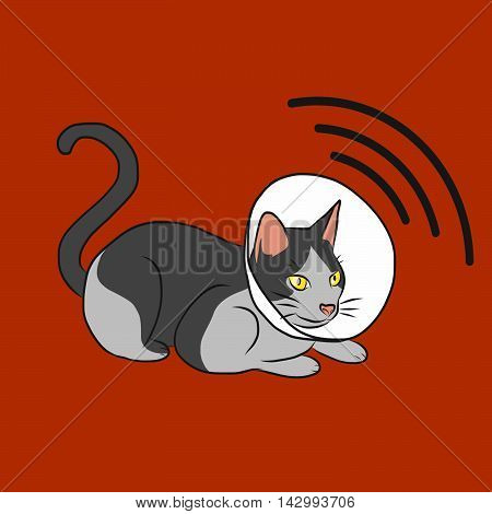 Cat radar cartoon illustration on red background