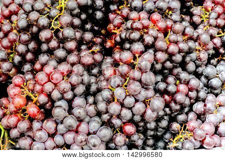Grape Beauty Seedless background in the market .